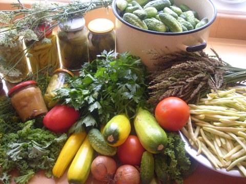 Postaw na ogródek warzywny