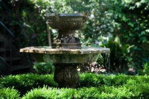 Sposoby na podlewanie naszych roślin podczas wakacyjnego urlopu