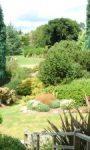 Jak komponować rośliny w ogrodzie
