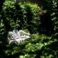 Meble do ogrodu angielskiego