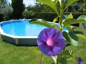 Niezastąpione w upalne dni – baseny ogrodowe