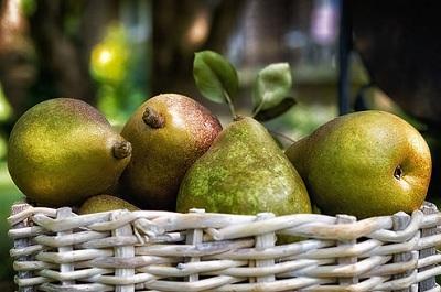 Co należy wiedzieć o opryskiwaniu drzew owocowych?