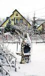 Przygotuj ogród na zimę