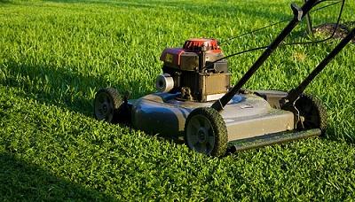 Jak dobrze skosić trawnik?