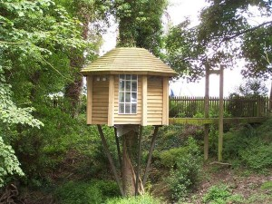 the-ultimate-tree-house-with-suspension-bridge-access-geograph-org-uk-1396507_l