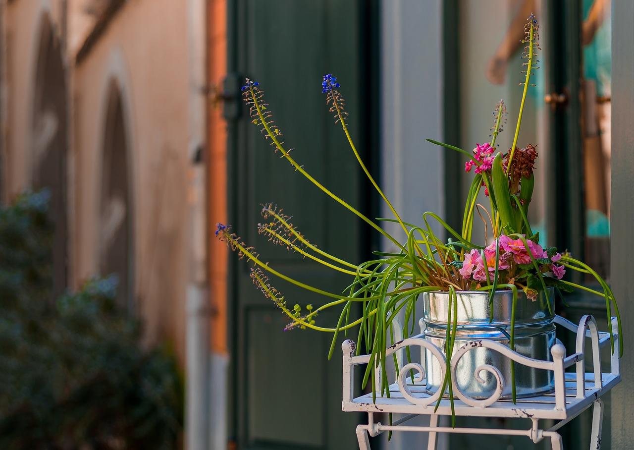 flowerpot-2138128_1280