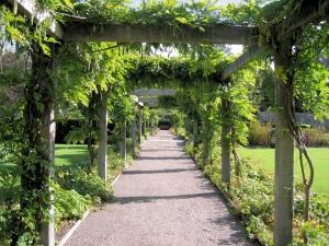 Wzbogać wejście do swojego ogrodu