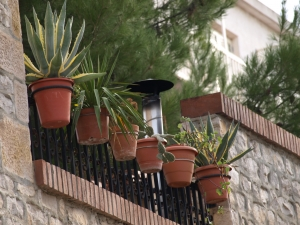 balkon z doniczkami